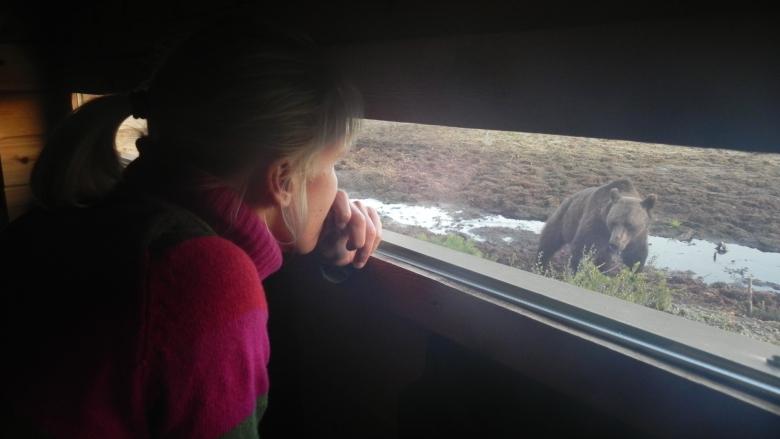 Nainen katsoo puisen rakennuksen ikkuna-aukosta ulkona vetisellä suolla seisovaa karhua. Karhun katse on kohti naista.
