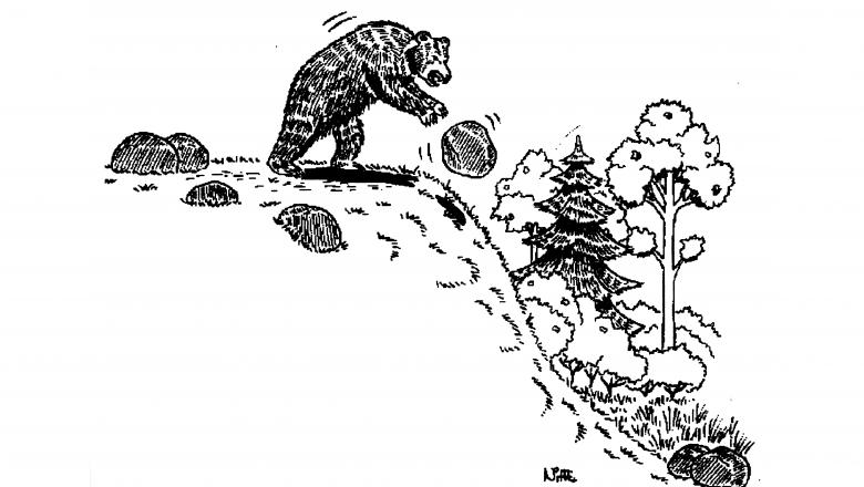 Mustavalkoinen piirros karhusta, joka heittää kiveä alas mäenrinnettä. Taustalla mäen alla puita.