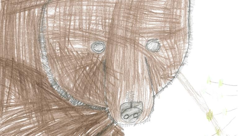 Lapsen piirros karhun päästä.